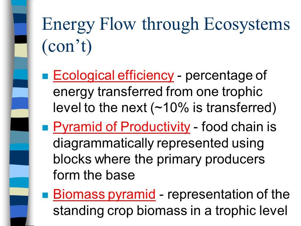 Energy Flow through Ecosystems (con't)