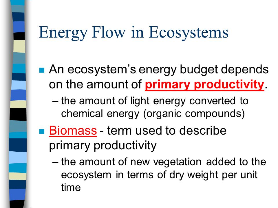 Energy Flow in Ecosystems