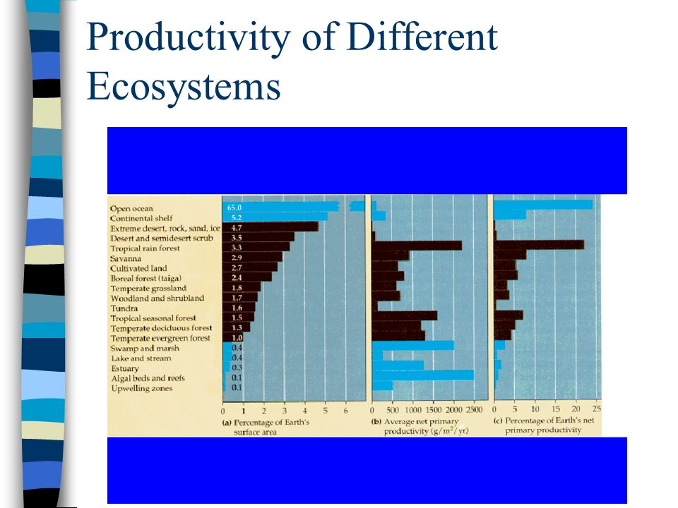 Productivity of Different Ecosystems