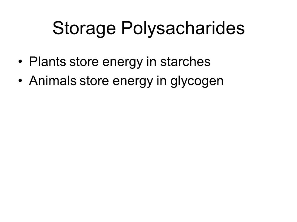 Storage Polysacharides