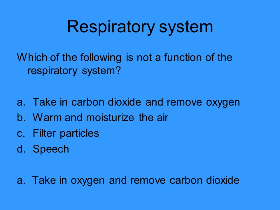 Respiratory system Which of the following is not a function of the respiratory system Take in carbon dioxide and remove oxygen.