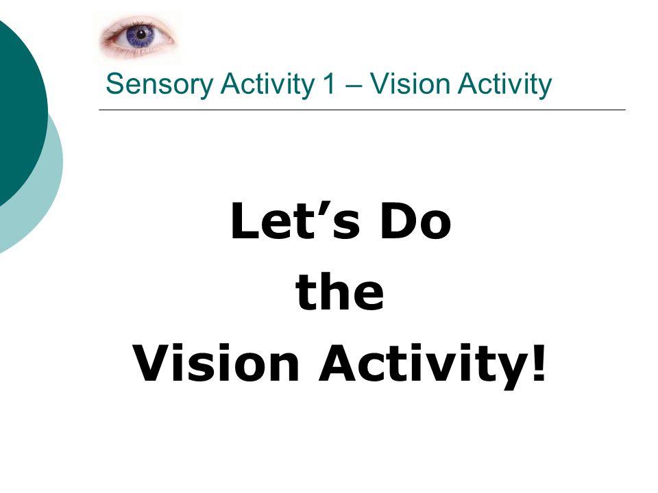Sensory Activity 1 – Vision Activity