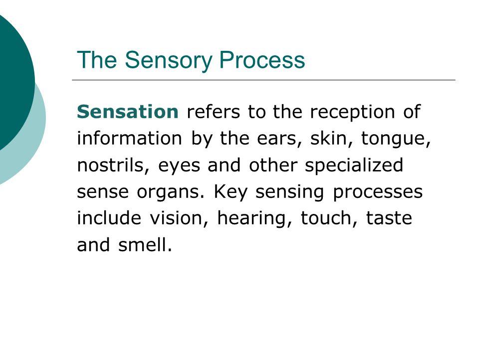 The Sensory Process
