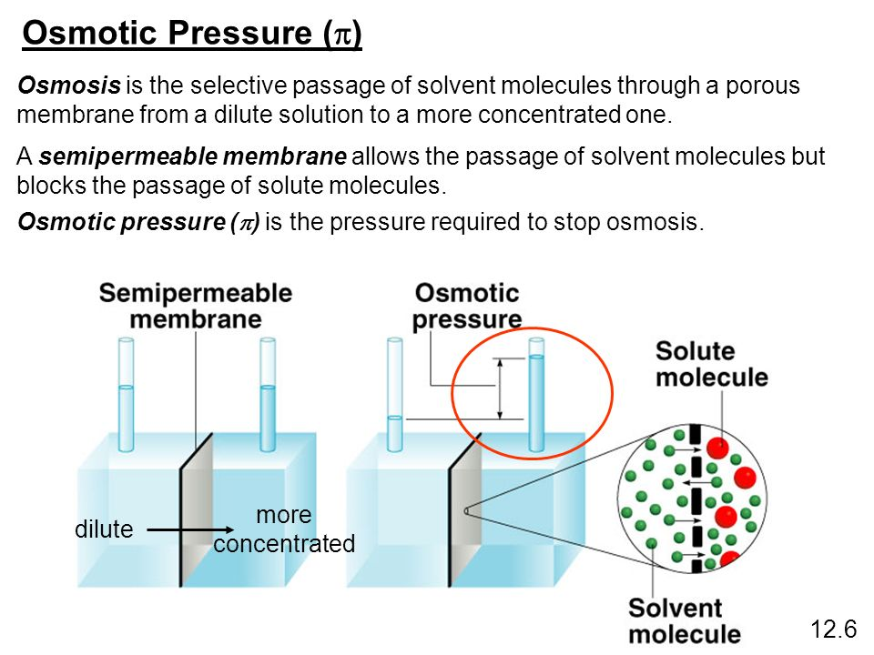 hypothesis for simulating osmotic pressure Pressure difference two major theoretical approaches to simulating volume rsr gorlainfluence of starling's hypothesis and joule heating on.