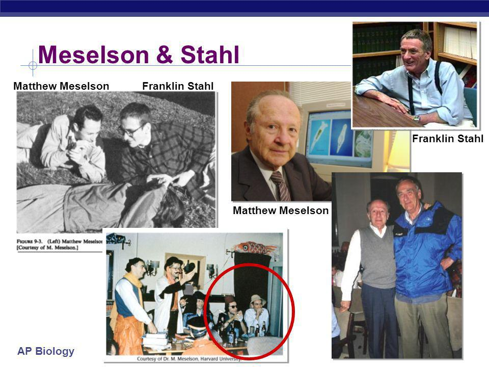 Meselson & Stahl Matthew Meselson Franklin Stahl Franklin Stahl