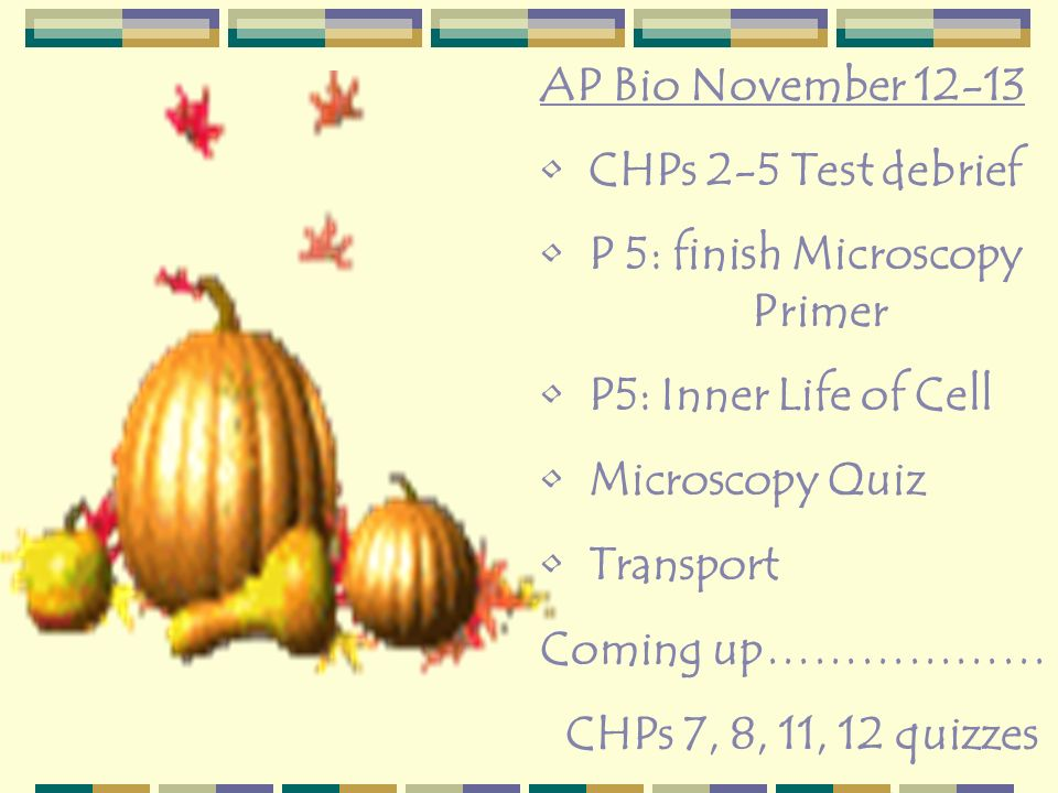 AP Bio November 12-13 CHPs 2-5 Test debrief. P 5: finish Microscopy Primer. P5: Inner Life of Cell.