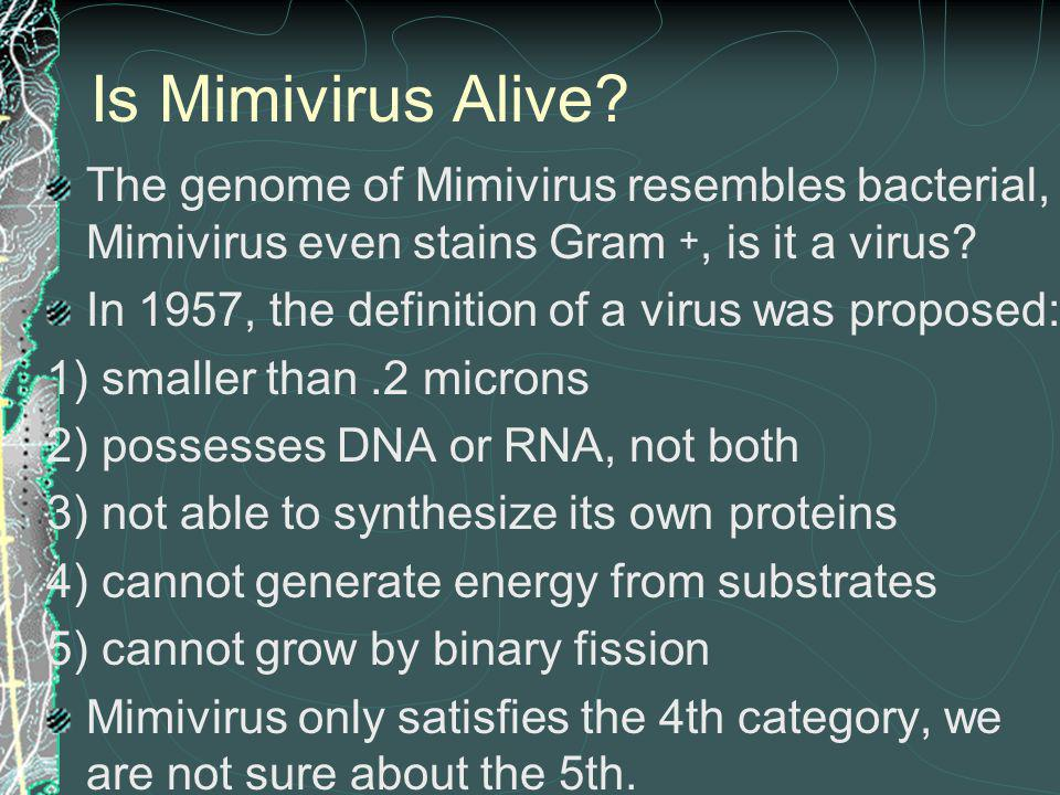 Is Mimivirus Alive The genome of Mimivirus resembles bacterial, Mimivirus even stains Gram +, is it a virus