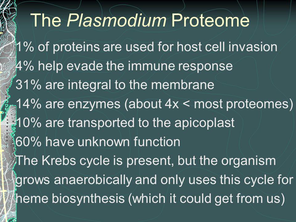 The Plasmodium Proteome