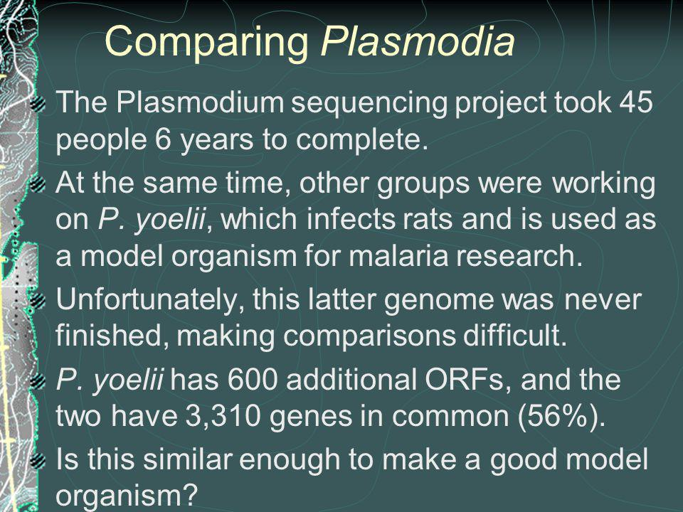 Comparing Plasmodia The Plasmodium sequencing project took 45 people 6 years to complete.