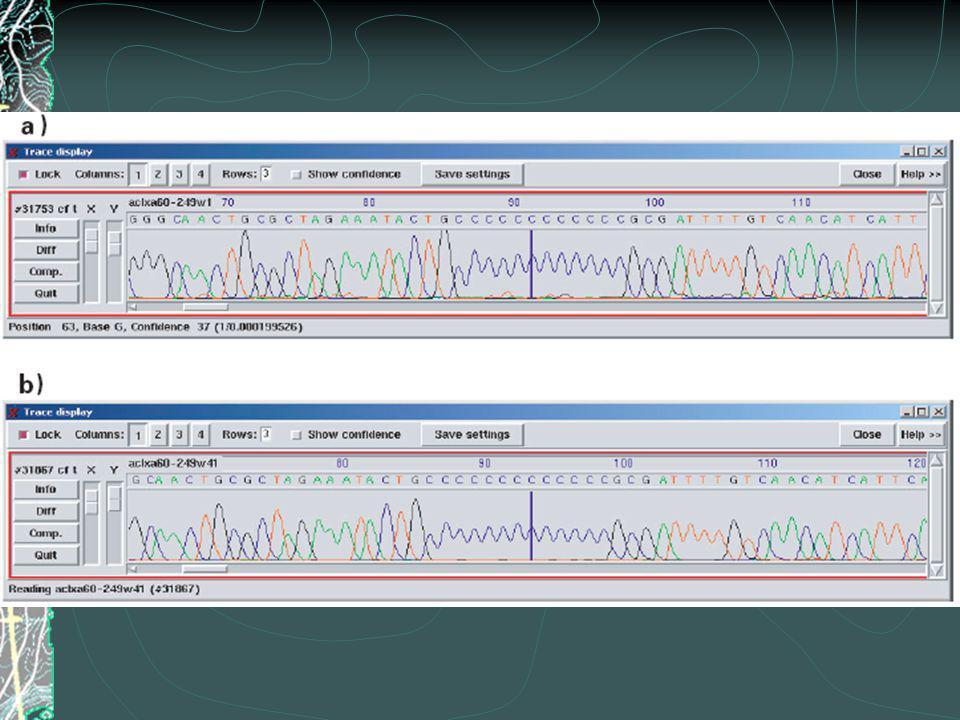 Figure 2.11 Polycytosine chromats reveal transcription regulatory mechanism.