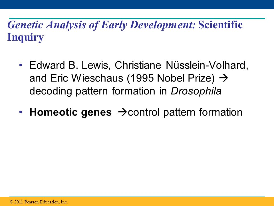 Genetic Analysis of Early Development: Scientific Inquiry
