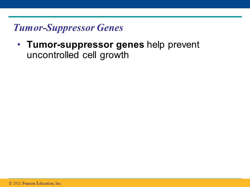 Tumor-Suppressor Genes
