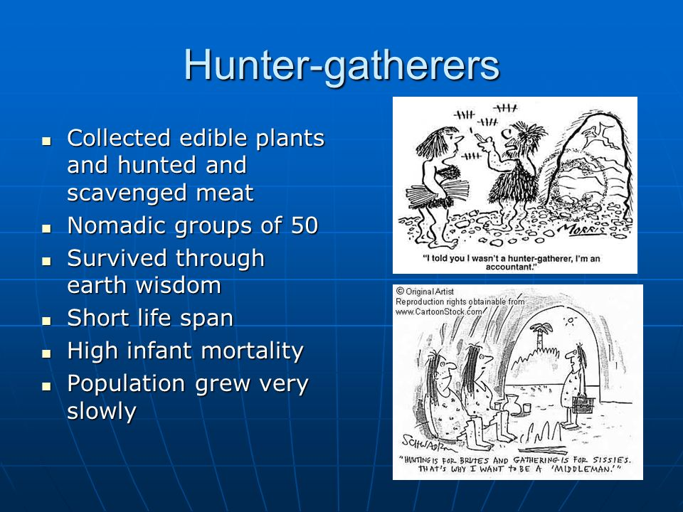 Hunter-gatherers Collected edible plants and hunted and scavenged meat