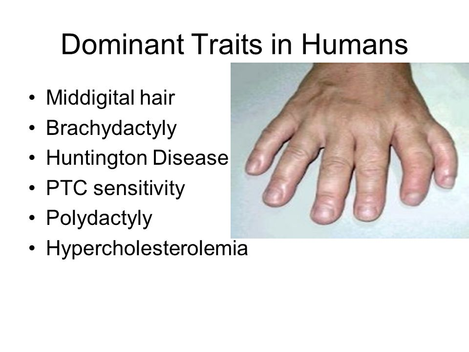 Dominant Traits in Humans