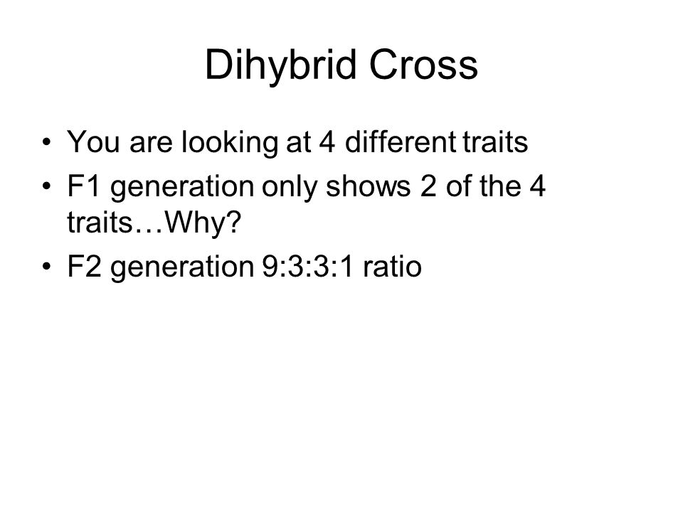 Dihybrid Cross You are looking at 4 different traits