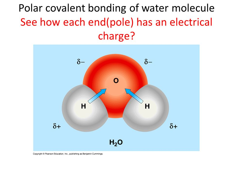Polar covalent bonding of water molecule See how each end(pole) has an electrical charge