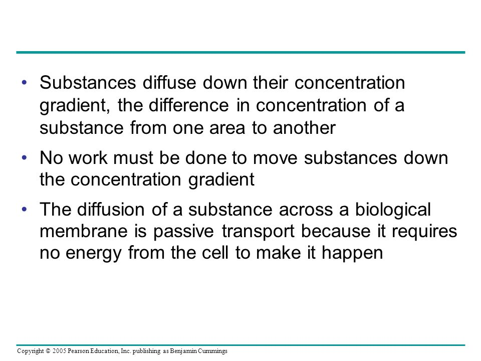 Substances diffuse down their concentration gradient, the difference in concentration of a substance from one area to another