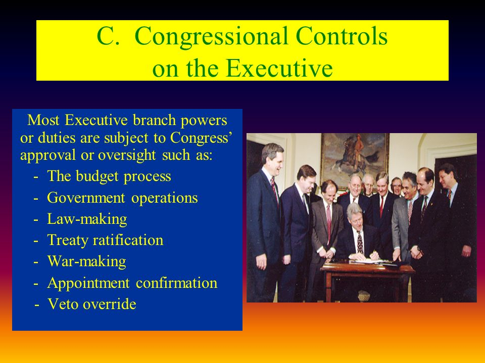 C. Congressional Controls on the Executive