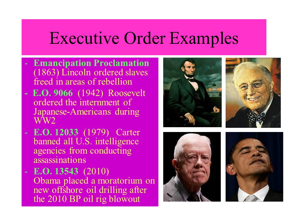 Executive Order Examples