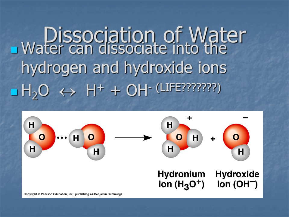 Dissociation of Water Water can dissociate into the hydrogen and hydroxide ions.