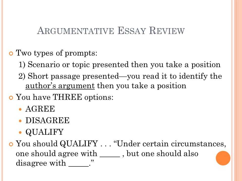 Argumentative Essay Review