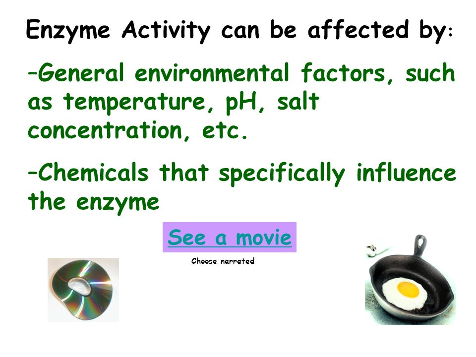 Enzyme Activity can be affected by: