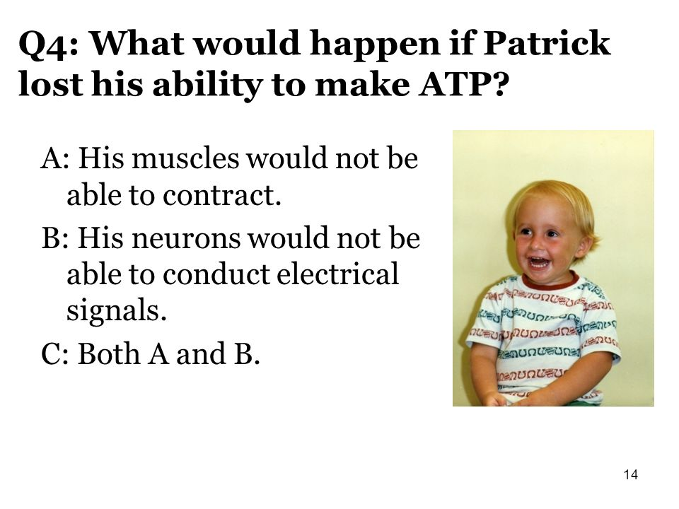 Q4: What would happen if Patrick lost his ability to make ATP
