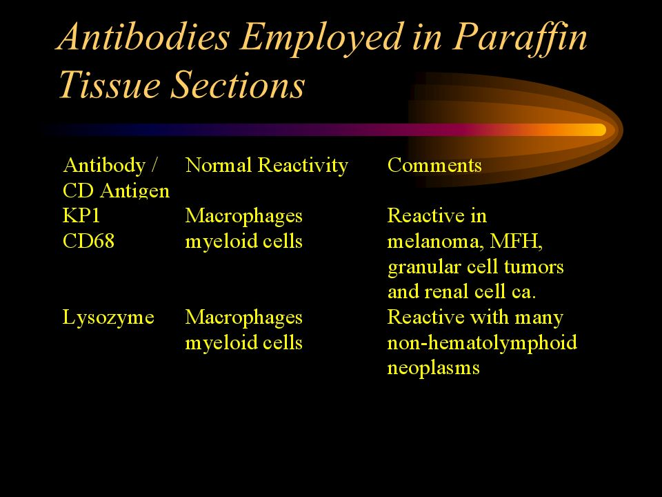 Antibodies Employed in Paraffin Tissue Sections