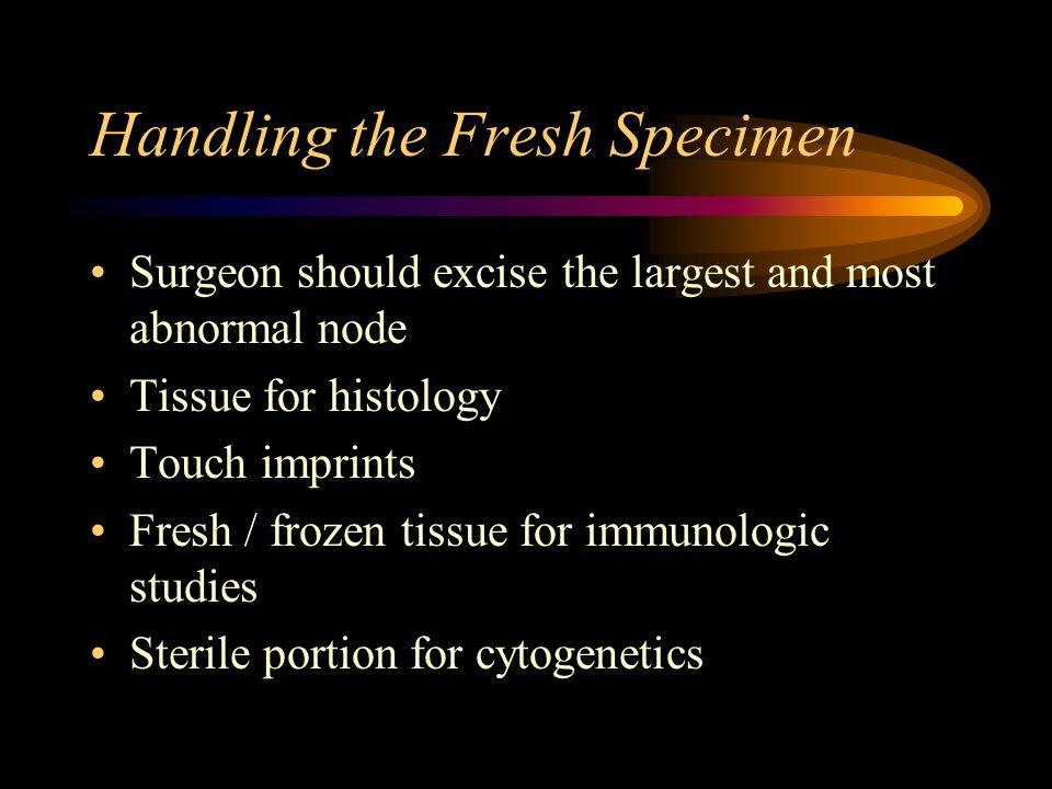 Handling the Fresh Specimen
