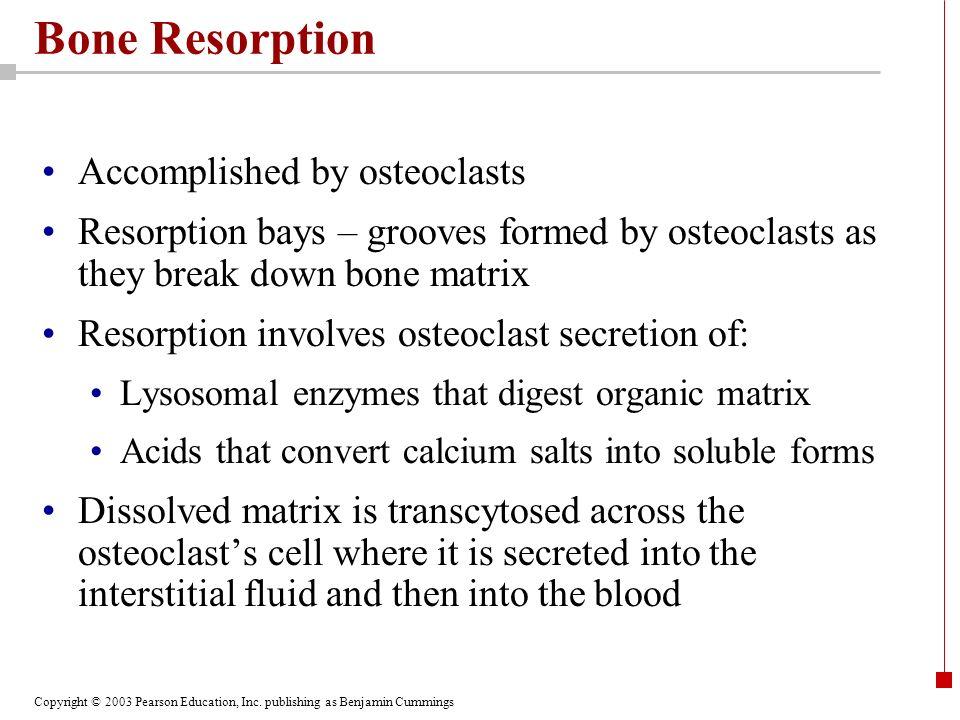 Bone Resorption Accomplished by osteoclasts