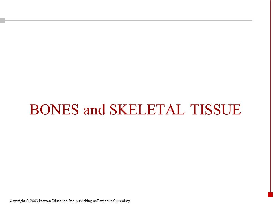 BONES and SKELETAL TISSUE
