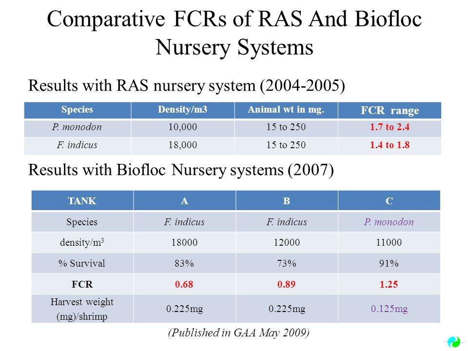 Comparative FCRs of RAS And Biofloc Nursery Systems