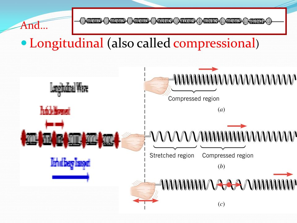 Longitudinal (also called compressional)