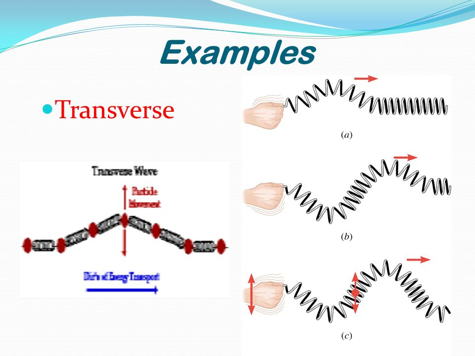 Examples Transverse