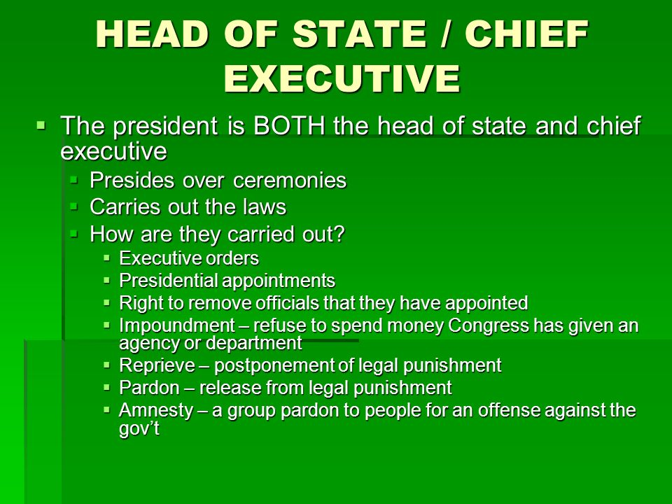 HEAD OF STATE / CHIEF EXECUTIVE