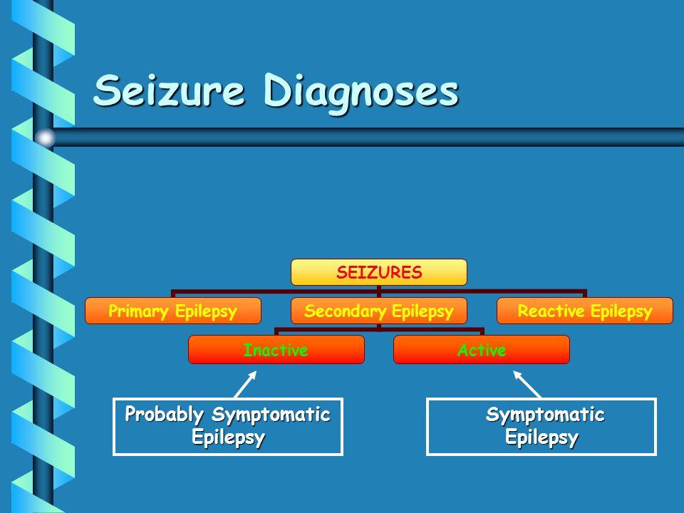 Probably Symptomatic Epilepsy