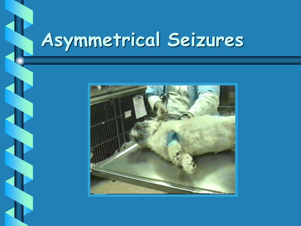 Asymmetrical Seizures
