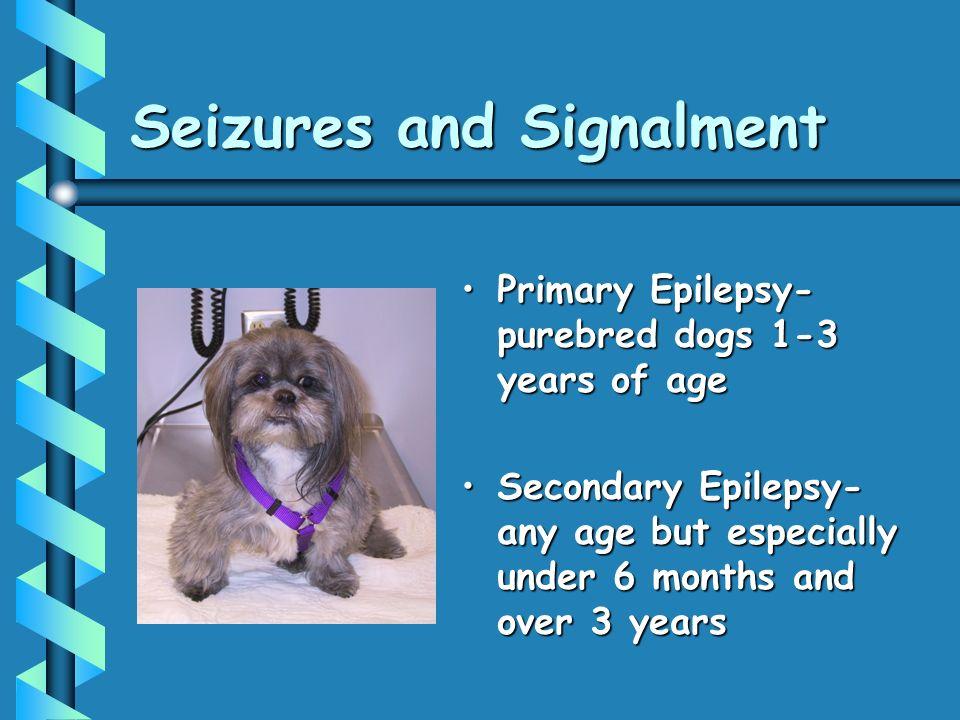 Seizures and Signalment