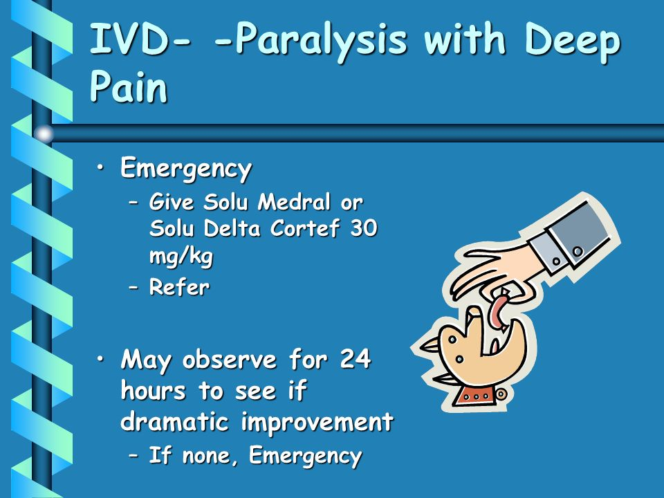 IVD- -Paralysis with Deep Pain