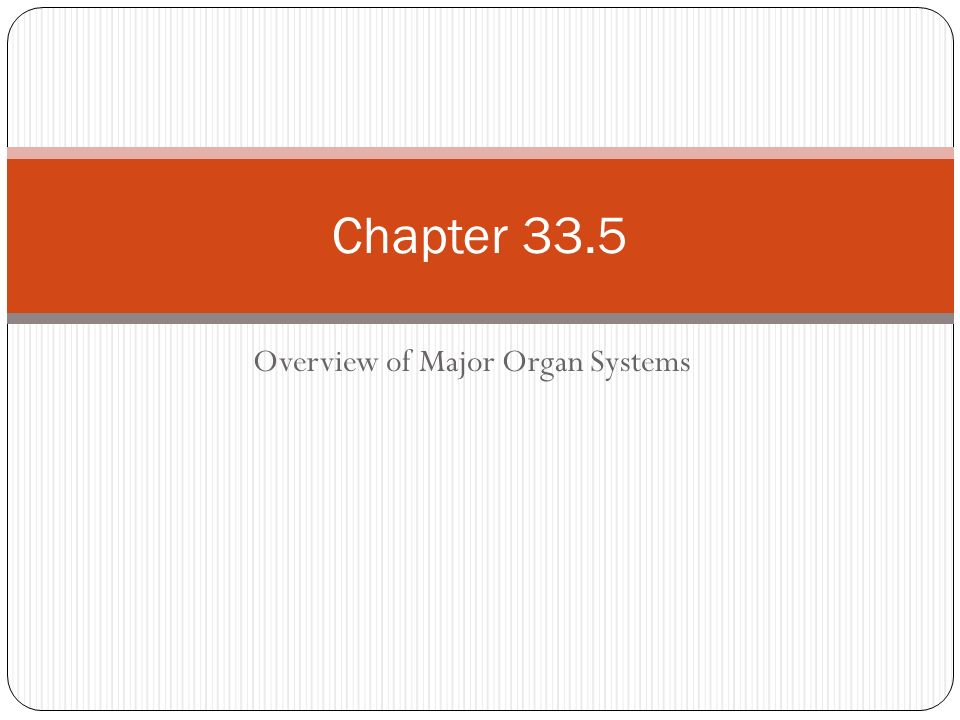 Overview of Major Organ Systems