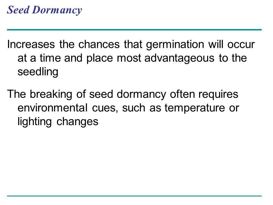 Seed Dormancy Increases the chances that germination will occur at a time and place most advantageous to the seedling.