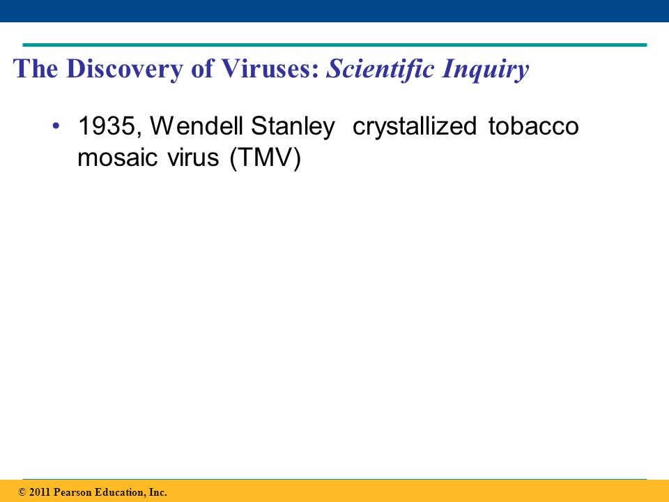 The Discovery of Viruses: Scientific Inquiry