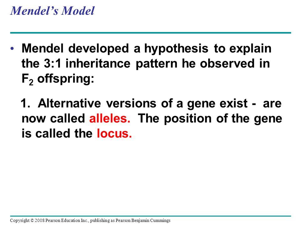 Mendel's ModelMendel developed a hypothesis to explain the 3:1 inheritance pattern he observed in F2 offspring: