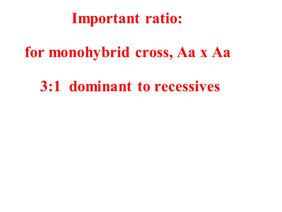Important ratio: for monohybrid cross, Aa x Aa 3:1 dominant to recessives