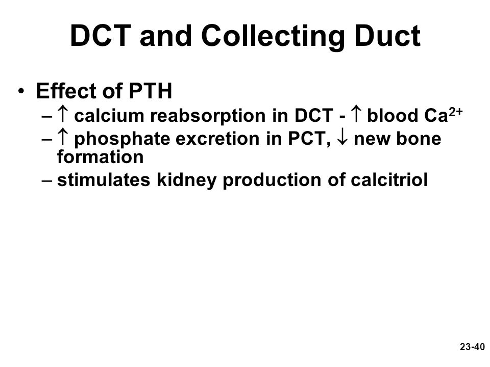 DCT and Collecting Duct