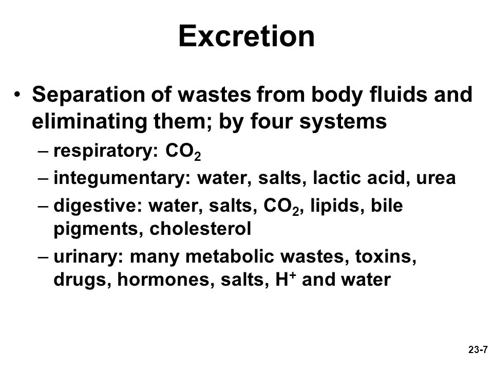Excretion Separation of wastes from body fluids and eliminating them; by four systems. respiratory: CO2.