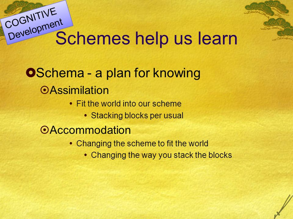 Schemes help us learn Schema - a plan for knowing Assimilation