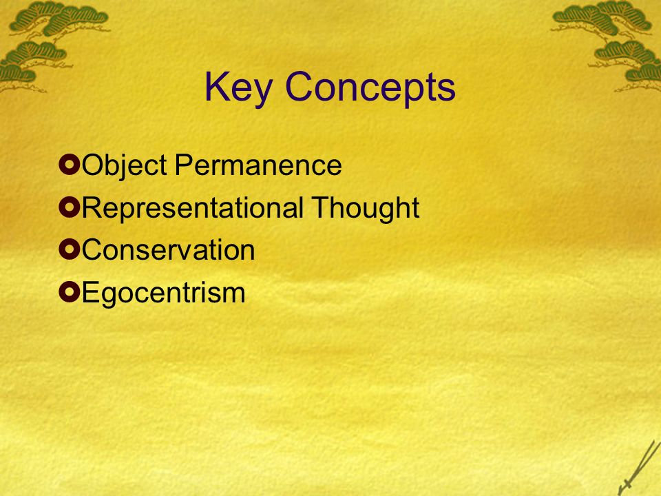 Key Concepts Object Permanence Representational Thought Conservation