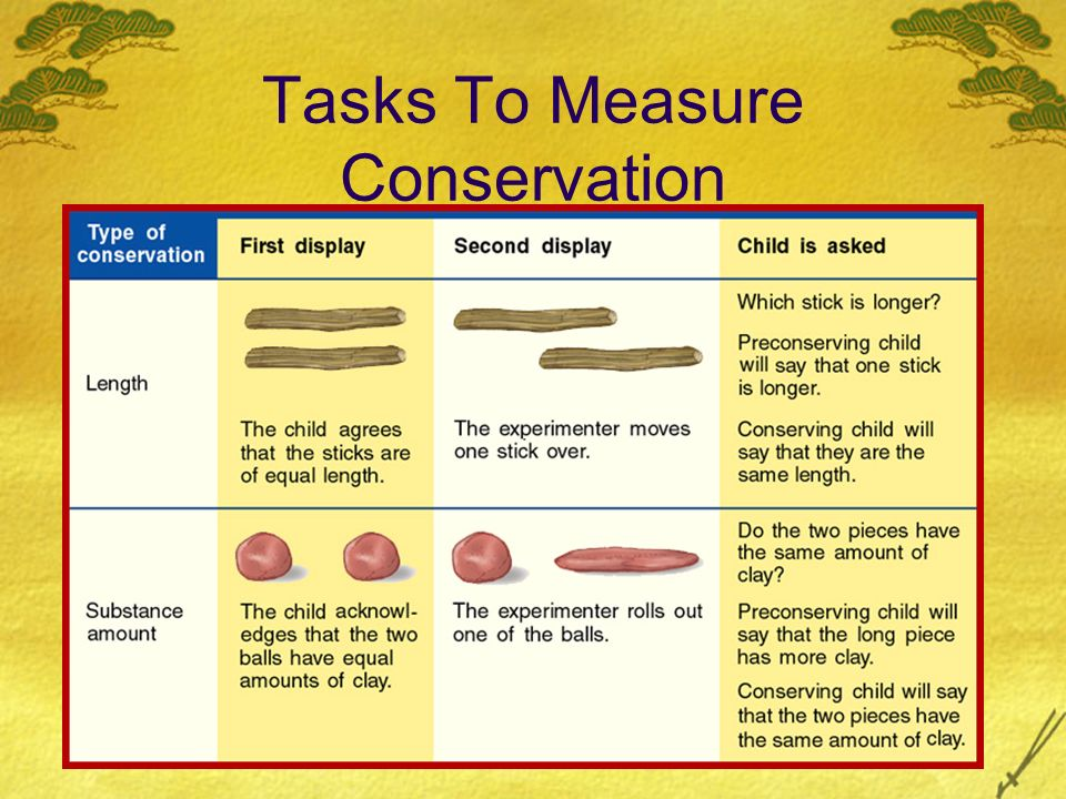 Tasks To Measure Conservation