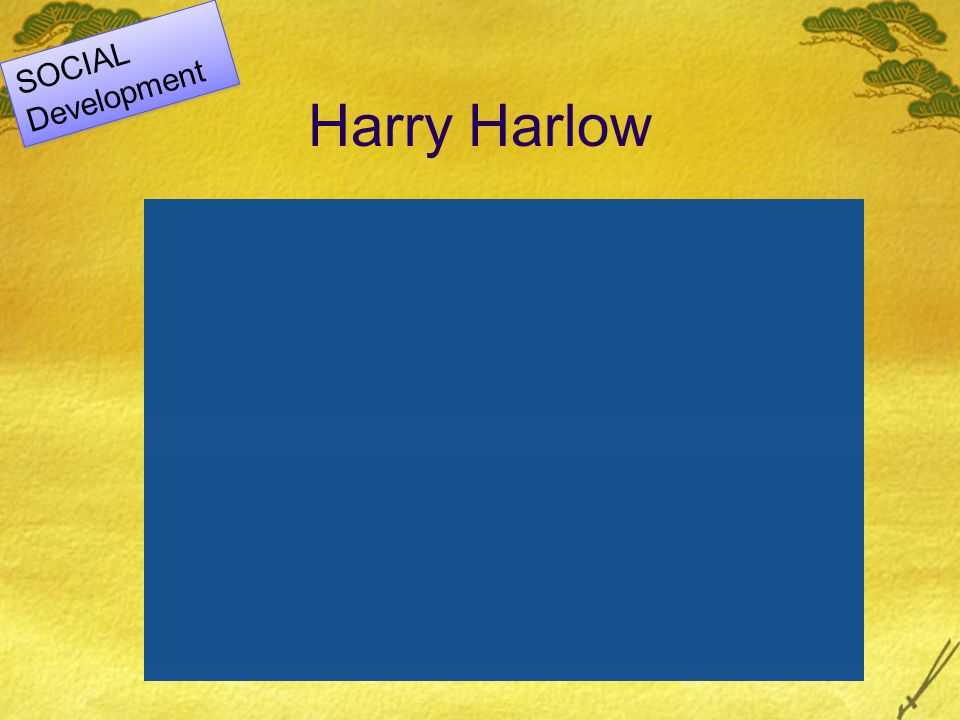 SOCIAL Development Harry Harlow